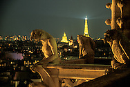 France. Paris. Notre Dame cathedral. gargoyls overlooking paris at night, Chimera gallery of Notre dame cathedral and the Seine river.