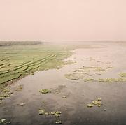 At the entrance point of the Sunderbans, Bangladesh.