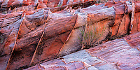 Fascinating sandstone patterns created over millions of years in the Valley of Fire State Park in Nevada.