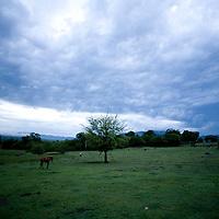 Central Plateau, Haiti.  5/21/09 Photo by Ben Depp