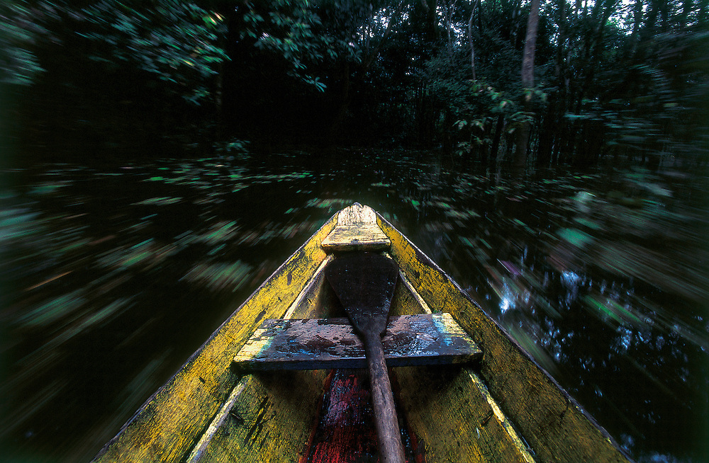 "Manacapuru_AM, Brazil.<br /> <br /> In flooded forests, the ""igarapes"" lead to the nests. In this environ- ment, canoes are the only possible means of transportation.<br /> Manacapuru, Amazonas, Brazil.<br /> <br /> Foto: JOAO MARCOS ROSA / NITRO"