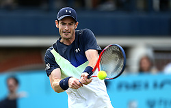Great Britain's Andy Murray during day two of the Fever-Tree Championship at the Queens Club, London.