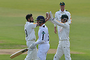 Imran Tahir and Chris Read celebrate the wicket of Brad Wheal during the Specsavers County Champ Div 1 match between Nottinghamshire County Cricket Club and Hampshire County Cricket Club at Trent Bridge, West Bridgford, United Kingdom on 13 August 2016. Photo by Simon Trafford.