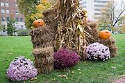 Jefferson City, Missouri MO USA, Missouri's governor's mansion with Halloween decorations