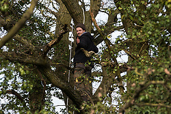Harefield, UK. 7 February, 2020. An environmental activist from Extinction Rebellion gives a thumbs up from a veteran oak tree close to the Harvil Road wildlife protection camp in order to try to protect it from felling. HS2 are expected to try to fell large numbers of mature trees in the immediate vicinity over the weekend even though the high-speed rail link is still awaiting Boris Johnson's approval.