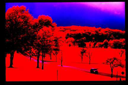 Infrared,Valley Forge, PA