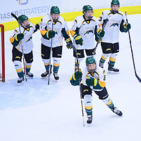 4th year forward Bailey Braden (8) of the Regina Cougars in action during the Women's Hockey Home Game on November 26 at Co-operators arena. Credit: Arthur Ward/Arthur Images