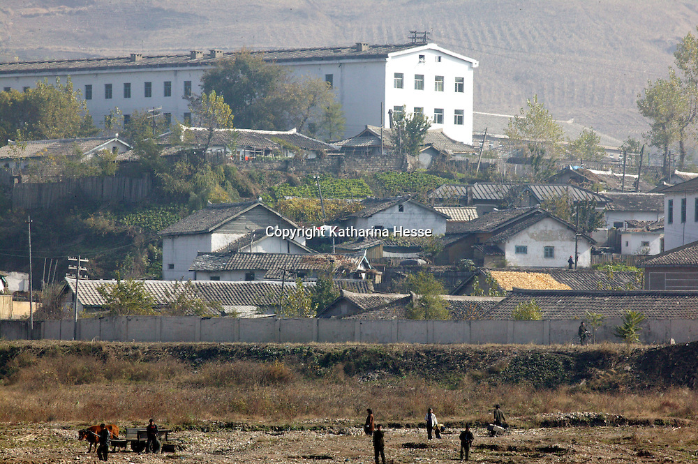"MANPO , OCTOBER-26:  farmers work in a field  in Manpon, North Korea,October 26,2006.  ..The military site of the nuclear test conducted by North Korea on October 9,2006 is located at a distance of 50 km from Manpo. Locals on the Chinese side opposite the border say, they knew that ""something"" had happened as an increased number of armed soldiers lined up along the coast right after the nuclear test and the factory's sirens were rining on October 9,2006. Manpo is North Koreas' 6th largest town."