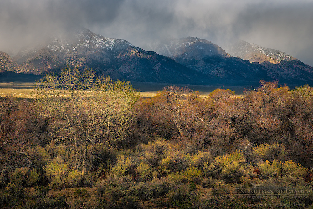 Storm clouds and sunlight drifiting over the mountains of the Eastern Sierra, near Lone Pine, Inyo County, California