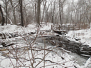 Rustic bridge in the Ramble of Central Park during a snow storm; New York City.