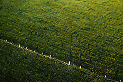 THEMENBILD - ein Weidezaun wirf seinen Schatten in eine Wiese, aufgenommen am 22. April 2019 in Kaprun, Oesterreich // a pasture fence throws its shadow into a meadow in Kaprun, Austria on 2019/04/23. EXPA Pictures © 2019, PhotoCredit: EXPA/ JFK