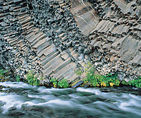 Plants and river at base of columnar basalt cliff