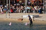 Sentosa Island. Underwater World Dolphin lagoon. Afternoon dolphin show.