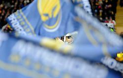 Worcester Warriors mascot Maximus appears behind warriors flags  - Mandatory by-line: Joe Meredith/JMP - 26/03/2016 - RUGBY - Sixways Stadium - Worcester, England - Worcester Warriors v London Irish - Aviva Premiership