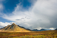 Ogilvie Mountains in autumn color, Tombstone territorial Park Yukon Canada