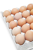 Brown eggs arranged in carton over white background