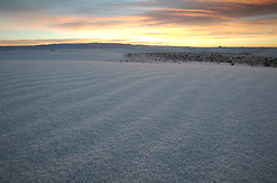 The sunrise creates magnificent colors, contrasting with the pale white dunes at White Sands National Monument, New Mexico.