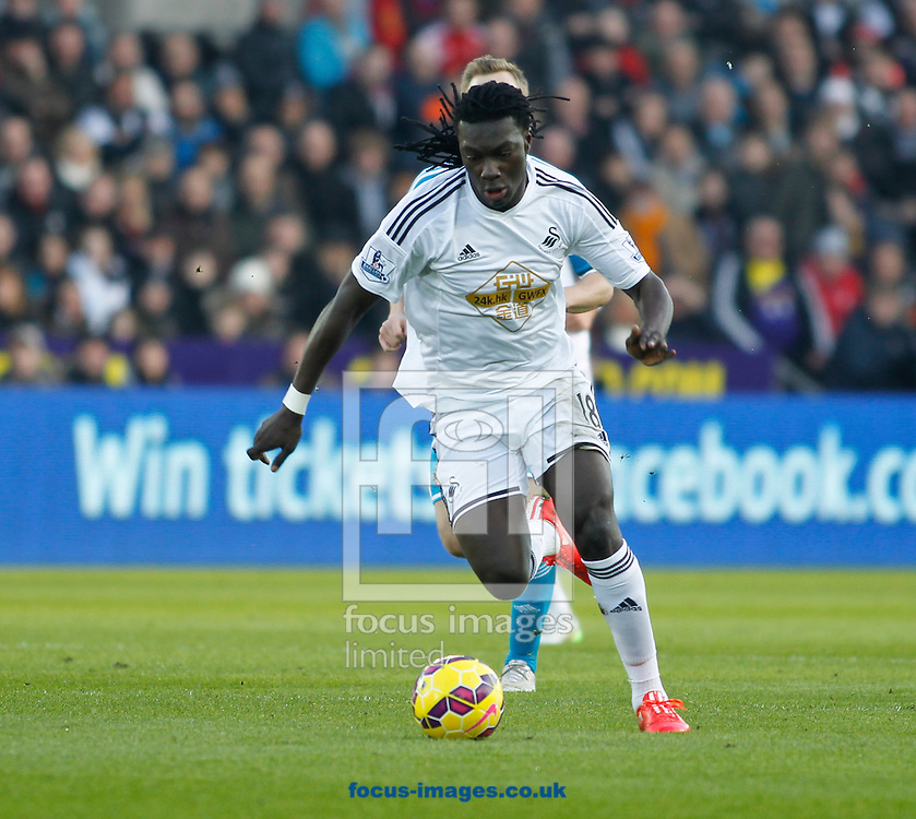Bafetimbi Gomis of Swansea City against Sunderland during the Barclays Premier League match at the Liberty Stadium, Swansea<br /> Picture by Mike Griffiths/Focus Images Ltd +44 7766 223933<br /> 07/02/2015