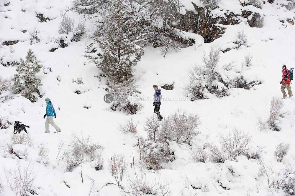 Side view of three adults and a black dog walking on a trail in the snow in Bend, Oregon. (releasecode: jk_mr1036, jk_mr1032, jk_mr1031) (Model Released)