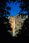 Early morning light on Angel Falls, highest waterfall in world (979m) in Canaima National Park, Auyantepui table mountain, Venezuela.