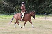 Class 38 - First Ridden Pony