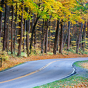 Road Curving Through Autumn Forest in Great Smoky Mountains National Park, Tennessee.