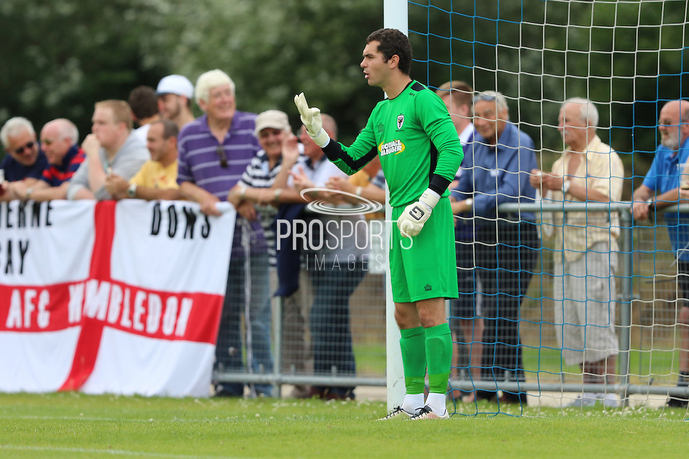 AFC Wimbledon goalkeeper James Shea (1) during the Pre-Season Friendly match between Margate and AFC Wimbledon at Hartsdown Park, Margate, United Kingdom on 16 July 2016. Photo by Stuart Butcher.