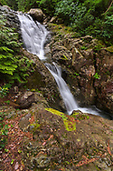 Mcdonald Falls on Murdo Creek in Davis Lake Provincial Park, British Columbia, Canada