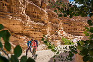 Sinai, Egypt, December 2018.  Coloured Canyon while hiking with the Tarabin Tribe through the Sinai Desert Coastal Ranges. The Sinai Trail is Egypt's 1st long distance hiking trail, running 230km from the Gulf of Aqaba to the top of the Sinai's highest mountain. It connects old trade, travel and pilgrimage routes through one of the Middle East's most iconic desert wildernesses and is managed by a cooperative of three Bedouin tribes. Photo by Frits Meyst / MeystPhoto.com