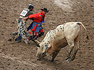Cowboy William Farrell escapes the bull with the help of a bull fighter, 27 July 2007, Cheyenne Frontier Days