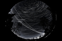 Night Sky Over New Jersey. Composite of images (22:00-22:59)  taken with a Nikon D850 camera and 8-15 mm fisheye lens (ISO 800, 10 mm, f/5.6, 30 sec).