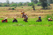 A playful group of rural workers in Burma (Myanmar)