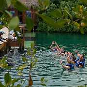 True to their philosophy of understanding through interaction, Xel-Há offers the famous Swimming with Dolphins program that lets people interact with dolphins, in addition, they offer a more intimate take on the program called Delphinus Trek. Delphinus Trek is a comprehensive look into the dolphins' life through these graceful and intelligent creatures' own eyes. People can learn about dolphins through direct observation in the crystalline waters of the Caribbean, and through the knowledge conveyed by the learnt staff of Delphinus(the organization in charge of all Swimming with Dolphins programs).