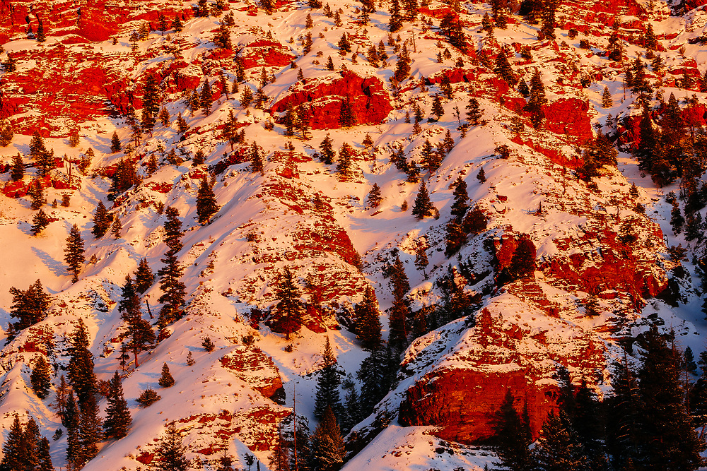 Sage brush leads out to the red hills of Bellyache Ridge in Wolcott Colorado