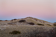 A dune in the Provincelands area bathed in twilight.