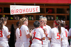 28 April 2007: Redbirds get riled up before the game on the perch of the Birdhouse. The Southern Illinois Salukis played the Illinois State Redbirds on the campus of Illinois State University in Normal Illinois.