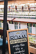 Roam community, Ubud. A global network of communal living spaces.