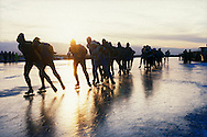 Nederland, Friesland, 19970104..De Elfstedentocht in januari 1997 in Friesland..Schaatsers rijden door de polders.  Mensen staan te kijken naar de schaatsers die voorbij komen. 6000 schaatsers en meer dan een miljoen toeschouwers...The Elfstedentocht is a speed skating competition and leisure skating tour in the province of Friesland in the Netherlands..6.000 skaters and over a million spectators were present. The route takes the skaters through eleven cities in Frisia, in the North of Holland. Flag of the provence Friesland. 200 kilometre race along the frozen canals of Friesland..