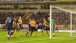 WOLVERHAMPTON, ENGLAND - Saturday, November 7, 2009: Arsenal scores the opening goal as Wolverhampton Wanderers' Ronald Zubar knocks the ball past past his own goalkeeper Wayne Hennessey during the Premiership match at Molineux. (Photo by David Rawcliffe/Propaganda)
