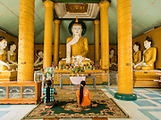 02 MARCH 2014 - MYAWADDY, KAYIN, MYANMAR (BURMA): Women pray in front of a statue of the Buddha at the Golden Pagoda in Myawaddy, Myanmar. Myawaddy is separated from the Thai border town of Mae Sot by the Moei River. Myawaddy is the most important trading point between Myanmar and Thailand.    PHOTO BY JACK KURTZ