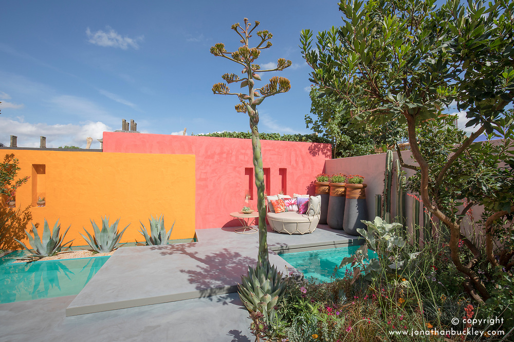 Agave parryi in flower<br /> Beneath a Mexican Sky Garden<br /> RHS Chelsea Flower Show 2017<br /> Design: Manoj Malde<br /> Built by: Living Landscapes<br /> Sponsored by: Inland Homes PLC<br /> Photography &copy; Copyright Jonathan Buckley