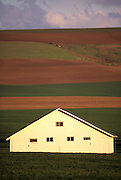 THIS PHOTO IS AVAILABLE FOR WEB DOWNLOAD ONLY. PLEASE CONTACT US FOR A LARGER PHOTO. Idaho. Near Lewiston. White barn against varied crop / fields.