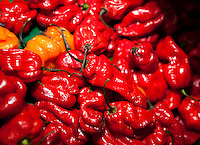Close-up of red chillies in grocery store