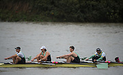 Hammersmith, Greater Game, London,  UK.  Goldie BCIII Elite 4+ competing in the 2015 Fours Head of the River Race, River Thames [ opposite Chiswick Eyot]  Saturday  07/11/2015 <br /> <br /> [Mandatory Credit: Peter SPURRIER: Intersport Images]