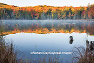 64776-01205 Pond in fall color Alger County Upper Peninsula Michigan