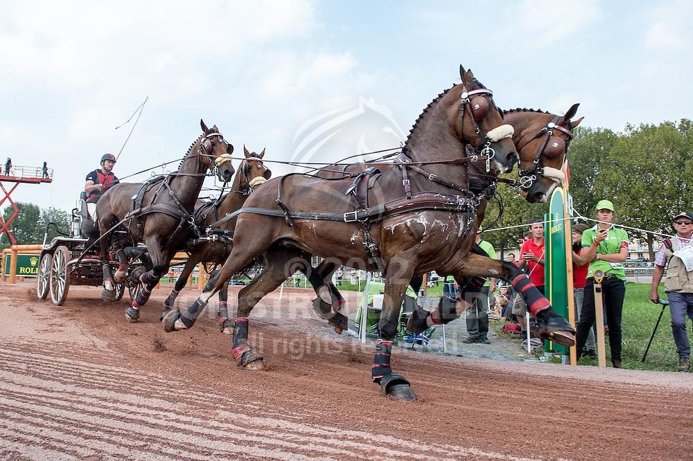 Chester Weber, (USA), Boris W, Boy W, Para, Splash, Uniek - Driving Marathon - Alltech FEI World Equestrian Games&trade; 2014 - Normandy, France.<br /> &copy; Hippo Foto Team - Jon Stroud<br /> 06/09/2014
