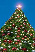 Tall 90 foot, Christmas Trees, Gold Star Shining, Xmas, Holiday, Decorations, Tree Decorated, Balls, Lights,