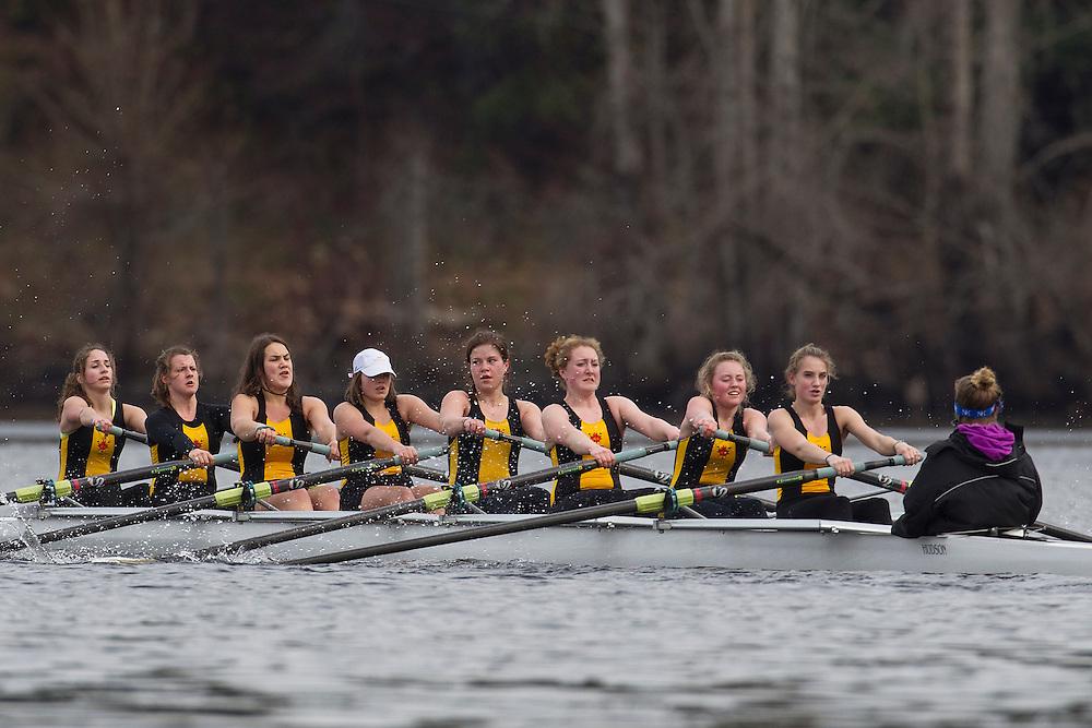 Shawnigan Lake School rowing photo kevin light