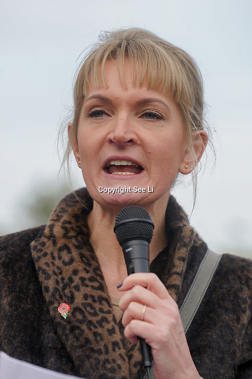 London, UK. 31st October 2017.  Speaker Sophie Walker rally at the Mummies demonstrations across the UK organised by Pregnant Then Screwed on pregnancy and maternity discrimination.