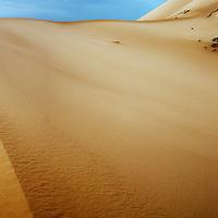 Lyrical sand dunes cut clean lines across the windswept Sahara Desert